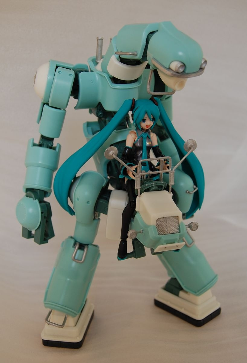 dsc_0051-hatsune-miku.jpg