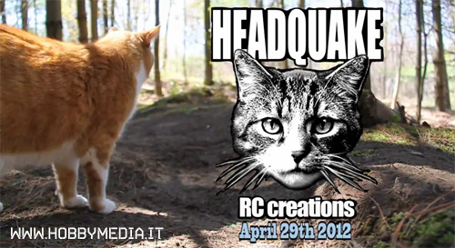 gatto-headquake-rc