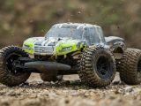 Monster Truck ECX AMP Ready To Run - Horizon Hobby