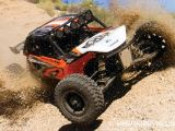 Axial EXO Terra Buggy 4WD in scala 1/10 - Robitronic