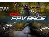 Biz Model: In arrivo la linea di articoli per FPV 250 Racer!