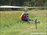 Video Folli: Elicottero RC contro uno sciame di Vespe!