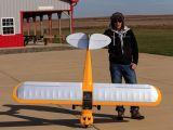 Aeromodello Hangar 9 Carbon Cub 15cc - Horizon Hobby