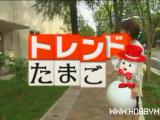 Modellismo e tecnologia: dal Giappone arriva il drone palla