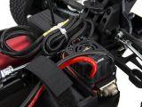 ECX Revenge Type E Buggy RTR - Horizon Hobby
