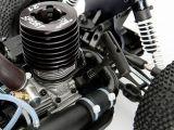 ECX Revenge Type N Nitro Buggy - Horizon Hobby