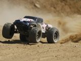 ECX Ruckus: Monster Truck Brushless 1/10 2WD RTR