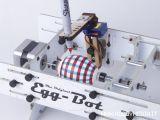 Decorare le uova di Pasqua con un robot - EggBot