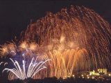 Happy New Year - Buon anno - 2009 Anno del bue