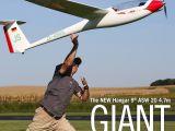 Aliante Giant Scale Schleicher ASW20 ARF - Horizon Hobby