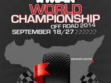 Campionato del mondo IFMAR 2014 Buggy 1/8 Nitro