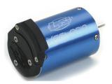 LOSI: 1/10 Xcelorin 6400kV Motore Brushless