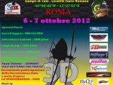 3DX Italy 2012 a Roma - Competizione di elimodellismo 3D
