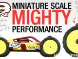 Losi 8IGHT Mini 4WD RTR: Brushless buggy 1/14 - Horizon