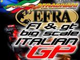 EFRA Italian Big Scale GP 2012 per automodelli F1 e GT 1/5