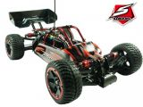 Sworkz FOX 4x4: Roll Cage Buggy in scala 1/10