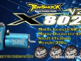 Motore brushless 6 Pole Tenshock X802 V2 per buggy 1/8