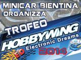Trofeo HobbyWing 2014 - Pista Minicar Bientina