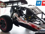 Baja buggy 4WD Nitro in scala 1:8 - Tsais GV 2011 GP Project